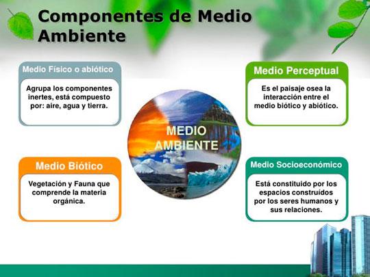 componentes medio ambiente