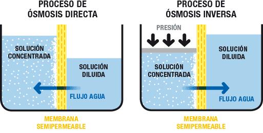 procesos de ósmosis