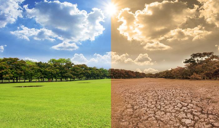 Algunos efectos del cambio climático