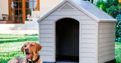 casetas de perros para el jardín