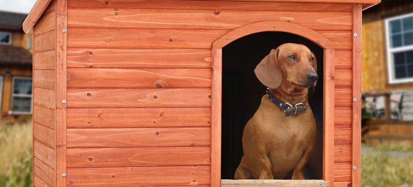casetas de perros