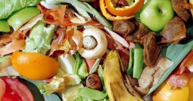 qué es la basura orgánica