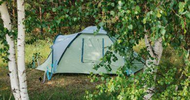 acampar en el bosque