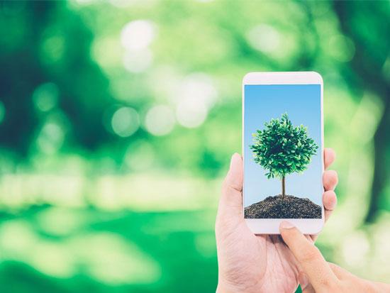 herramientas online que benefician al planeta
