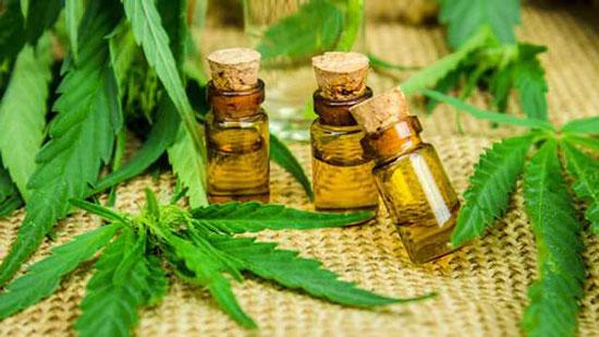 propiedades del cannabis
