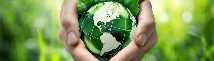 poliza de daños medioambientales