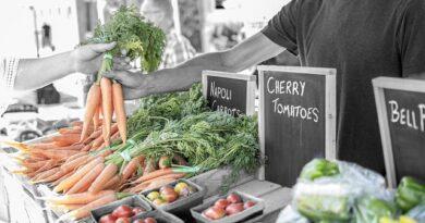 Mantenerse saludable con una buena alimentación ecológica