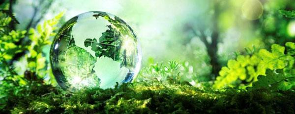 noticias ecologicas