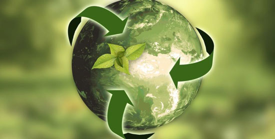 peridismo ecologico