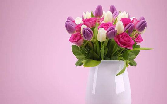 significado de tulipanes