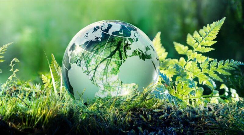 Cuentas de Tik Tok de ecología interesantes
