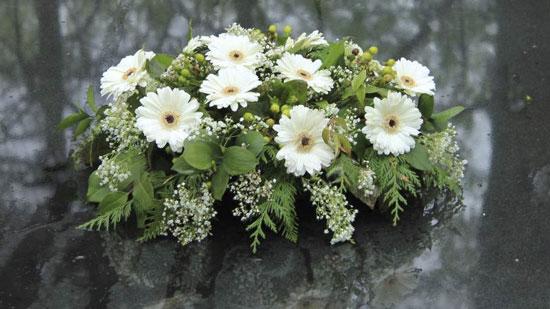 plantas para coronas funebres